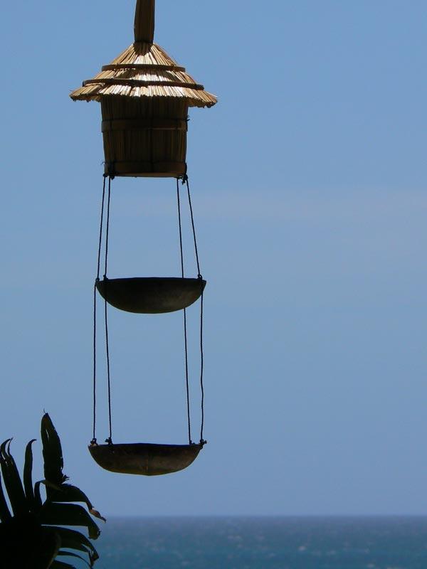 Caraibe birds House